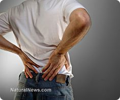 guidelines more catalog musculoskeletal back pain