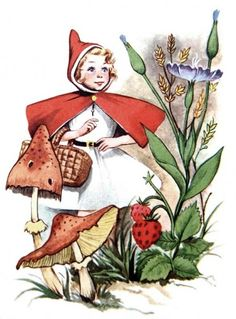 Little Red Riding Hood, Red Hood, Forest, Fairy Tales Children's Book Illustration, Botanical Illustration, Book Illustrations, Red Riding Hood Book, Hood Books, Old Children's Books, Children Sketch, Fairytale Art, Photoshop
