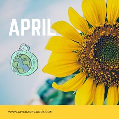@givebackgoods posted to Instagram: April 2021! . . Shop sustainable at GiveBackGoods.com (link in bio, shipping is always included). . . #GiveBackGoods #GiveBack #gogreen #ecofriendly #zerowaste #sustainability #sustainable #eco #nature #environment #green #gogreen #savetheplanet #fairtrade #handmade #organic #climatechange #fightclimatechange #earth #bethechange #recycle #reuse #reducewaste International Holidays, Reduce Waste, Giving Back, Save The Planet, Go Green, Climate Change, Reuse, Sustainability, Eco Friendly