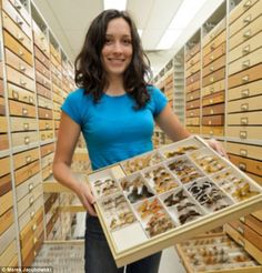 museum collection - Google Search