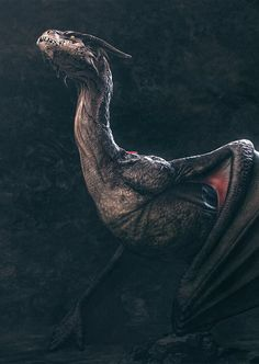 fantasyartwatch: Dragon by Robin de Jong