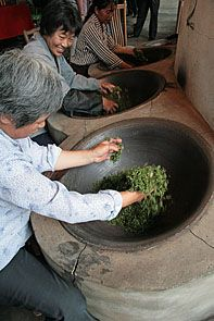 No other country on earth has contributed as much to the rich history of tea or to the discovery and understanding of tea cultivation and tea manufacture as China. During the illustrious dynasty periods of Chinese history, the six great classes of tea ( black, green, oolong, Pu-erh, white, yellow ) were created one by one as tea workers continually refined the tea-making process.