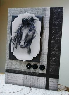 Favorite serendipity horse card by Holstein - Cards and Paper Crafts at Splitcoaststampers Horse Cards, Serpentina, Birthday Cards For Men, Fathers Day Cards, Animal Cards, Masculine Cards, Creative Cards, Greeting Cards Handmade, Diy Cards