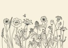 "Take a look at my @ Behance project: One-Sheet Calendar – Meadow Flowers"" ww … - Top 99 Pencil Drawings Simple Flower Drawing, Flower Line Drawings, Botanical Line Drawing, Floral Drawing, Botanical Drawings, Flower Art, Drawing Flowers, Simple Flowers, Fresh Flowers"