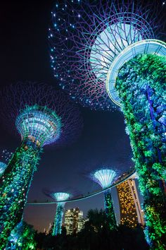 An Overnight Layover in Singapore - Living in Another Language Visit Singapore, Singapore Travel, Singapore Changi Airport, Permanent Vacation, Eden Project, Building Facade, Beautiful Places To Visit, Places To Travel, Architecture Design