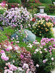Cool Beautiful Garden Ideas: Flower Gardens