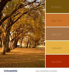 Color Palette ideas from 191 Autumn Images Yarn Color Combinations, Colour Schemes, Fall Color Palette, Colour Pallette, Couleur Html, Color Balance, Tree Leaves, Colour Board, Nature Images
