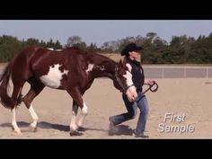 Showmanship Tips by Certified Horsemanship Assn. and American Paint Horse Assn. - YouTube