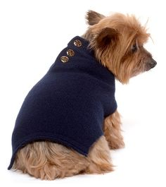 Tory Burch Dog Sweater: Navy and gold — a classic combo for the most discerning dogs. #EditorsWishlist