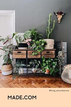 Show off your storage in the best way possible way - with plants, obvs. Make your hallway all the more welcoming with a trailing string of hearts, desert-like cacti and Monstera leaves aplenty. Indoor Garden, Indoor Plants, Hallway Designs, Table Storage, Inspiration Wall, Hallway Decorating, House Colors, House Plants, Ladder Decor
