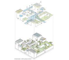 Dynamisch masterplan Cityplot Buiksloterham - Amsterdam - Delva Landscape Architects