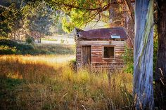 Pickers' Hut by Chris Cobern:  in the early morning light, at Woodstock, near Huonville, Huon Valley, southern Tasmania, Australia  [Please keep photo credit and original link if reusing or repinning. Thanks!]