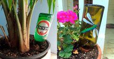 botellas-regar-plantas