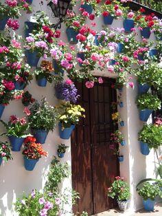 El concurso de Patios de Córdoba, en el mes de mayo, un espectáculo increíble declarado Patrimonio Inmaterial de la Humanidad por la Unesco.