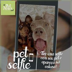 Agora você pode mostrar seu Pet pra todos os seus amigos do Facebook e ainda aparecer na coluna Pet News!  Quer saber como?  Basta tirar uma selfie bem legal com ele(a) e enviar para o e-mail petnews.revistadavila@gmail.com