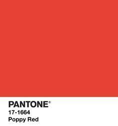 pantone poppy red - Google-haku