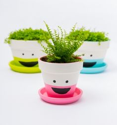 DIY funny face planters with living hair // Vidám cserepek élő növény hajjal // Mindy - craft tutorial collection //