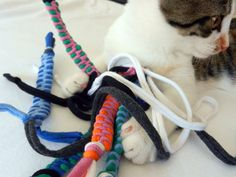 Upcycled Tshirt Cat Toys with Tail Rainbow Tie door looneyjoontees