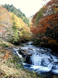 Japan scenery at it's very best. Takayama, Gifu Prefecture - http://www.hida.jp/english/