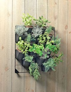 Vertical Wall Garden. Would be perfect for my patio but being as I am a plant murderer I might have to fill it with fake flowers. How tacky would that be?!