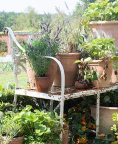 Jo Malone London   The Herb Garden   Be creative, grow your herbs in crates or vintage buckets, anything with a bit of drainage in the bottom.