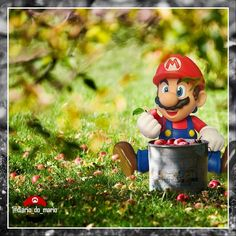 #mario #mariobros #game #gamer #games #videogame #marioworld #nintendo #bandai #fun #diversão #entretenimento #entertainment #kids #man #woman #bandainamco #figuarts #actionfigure #playstation #xbox #retro #apple #woods #harvest #fruit #food