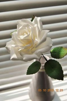 simply white- rose gumpaste flower - Cake by Grace Lorenzo
