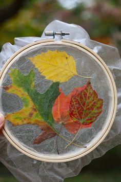 Wax paper pressed leaves in an embroidery hoop!