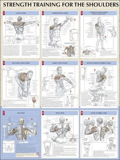 Strength Training for the Shoulders