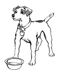 jack russell coloring pages - photo#6