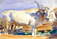 White Ox at Siena - John Singer Sargent, c.1910