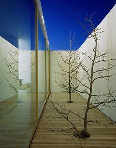 House At Zimmerberg Bottom / Rossetti + Wyss Architekten