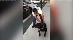 Soldier reunites with service dog for first time since 2011 | abc7.com