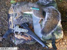 Super Comanche and squirrel