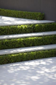 Peter Fudge Gardens - Our Gardens Landscape Stairs, Landscape Lighting, Landscape Architecture, Architecture Design, Modern Landscaping, Outdoor Landscaping, Outdoor Gardens, Landscaping Design, Landscape Materials