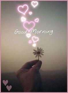 Good Morning Beautiful Quotes, Morning Love Quotes, Cute Good Morning, Morning Greetings Quotes, Good Morning Picture, Good Morning Flowers, Good Morning Messages, Morning Pictures, Good Morning Wishes