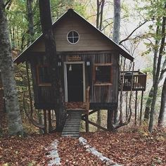 little cabin in the woods                                                                                                                                                                                 More