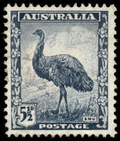 Picture of AUSTRALIA - CIRCA A stamp printed in Australia shows Emu, circa 1942 stock photo, images and stock photography. Old Stamps, Rare Stamps, Vintage Stamps, Australian Painting, Australian Birds, Stamp Values, Ayers Rock, Postage Stamp Art, Stamp Printing