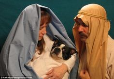Canine Christ: This couple got creative with their Christmas photo - and allowed their dog to get into the act