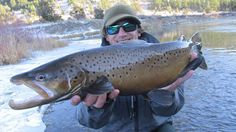 Photo of the Day: The Giants of November - Orvis News Missouri River, Fishing Quotes, Trout, Fly Fishing, November, Photo And Video, News, Videos, Fun