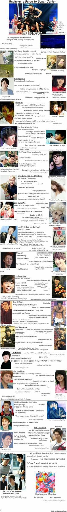 Beginner's Guide to Super Junior ☺  { #Guide #BeginnersGuidetoSuperJunior #SuperJunior #SUJU #ELF #EverLastingFriend #SMEntertainment #Kpop #KpopFunny #KpopMeme }