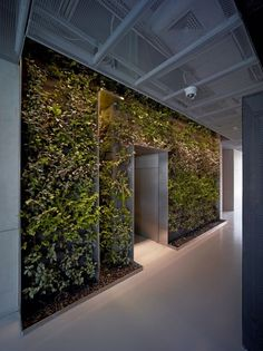 Vertical Garden - Taoyuanju Office Interior Renovation by Vector Architects. Patio Interior, Interior Plants, Office Interior Design, Office Interiors, Interior And Exterior, Design Offices, Interior Ideas, Interior Inspiration, Design Inspiration