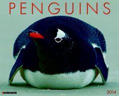 Fat Penguins Rock   Animals Rock Animals, Pet Rocks, Penguins, Calendar, Fat, Penguin, Menu Calendar