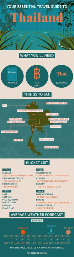 Your Essential Travel Guide to Thailand (Infographic) | Thailand, Island, weekend break, Asia, bucket list, wanderlust, adventure, challenge, coffee, bar, food, must try, Summer, Beach, Phuket, Bangkok