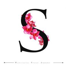 S alphabet letter watercolor floral background PNG and Vector Leaf Background, Background Vintage, Watercolor Background, Background Patterns, Watercolor Flowers, Vector Background, Alphabet A, Alphabet Letters Design, Lettering Design