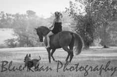 Blue Roan Photography Equine Photo Shoot  Horses Horse Photo Shoot Horse Love Senior Photos