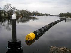 Termonbarry, Near Longford, Ireland Leaf Blower, Outdoor Power Equipment, Roots, Ireland, Irish, Scenery, Irish Language, Landscape, Paisajes