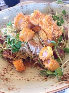 Photo of Mikuni Japanese Restaurant & Sushi Bar - Elk Grove, CA, United States. Sa salad: cabbage, cucumber, daikon, jalapeño, seared rare tuna, panko shrimp and vinaigrette dressing (soy, sesame oil, ponzu?).