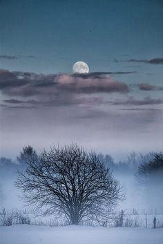 Snow Mist