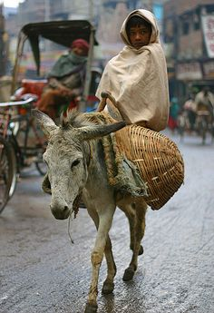 Off to the market in Varanasi, India. Sights like this are everywhere in India. www.TheTripStudio.com